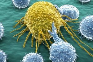 Scientists manage to cure bladder cancer with the common cold virus
